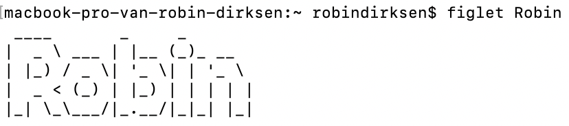 "Figlet terminal art with value: ""Robin"""